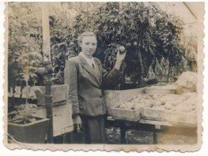 Август 1956 год. Теплица посёлок XI лет Октября